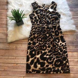NWT Calvin Klein Leopard Print Sheath Dress